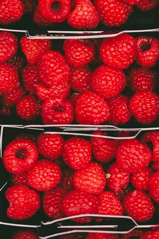iPhone Wallpaper Fresh red raspberries, fruit, boxes
