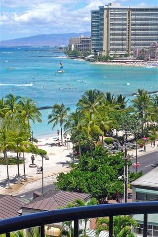 iPhone Wallpaper Honolulu, Hawaii, USA, palm trees, buildings, sea