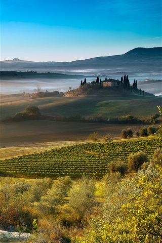 iPhone Wallpaper Italy, Tuscany, beautiful countryside