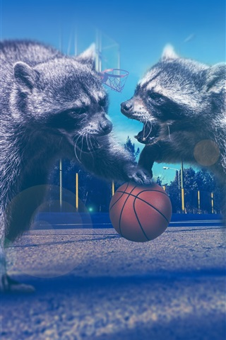 iPhone Wallpaper Raccoons play basketball, creative picture