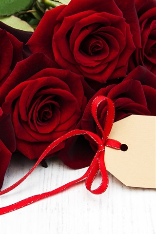 iPhone Wallpaper Red roses, romance, gift