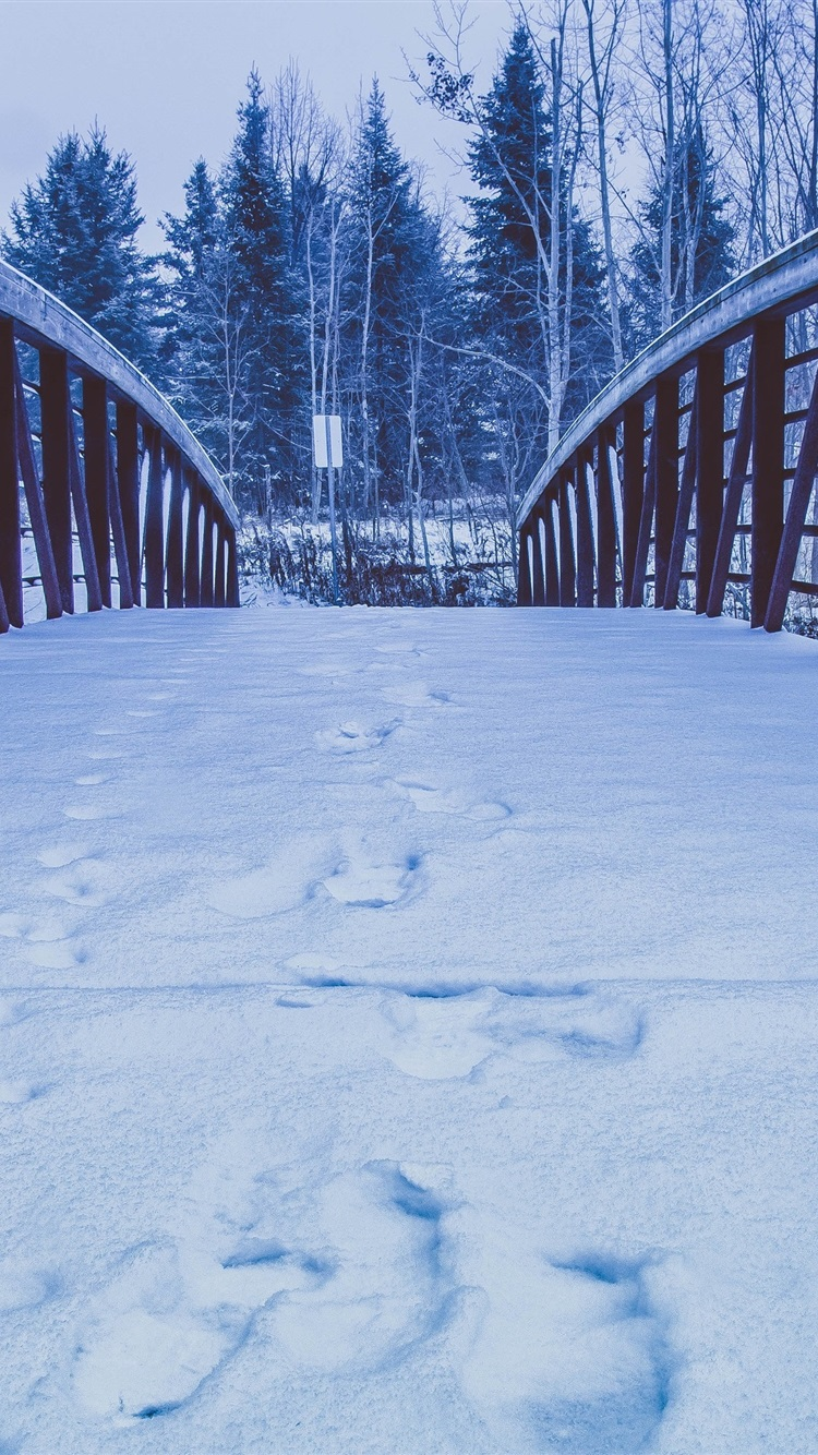 wallpaper snow  bridge  trees  winter 3840x2160 uhd 4k