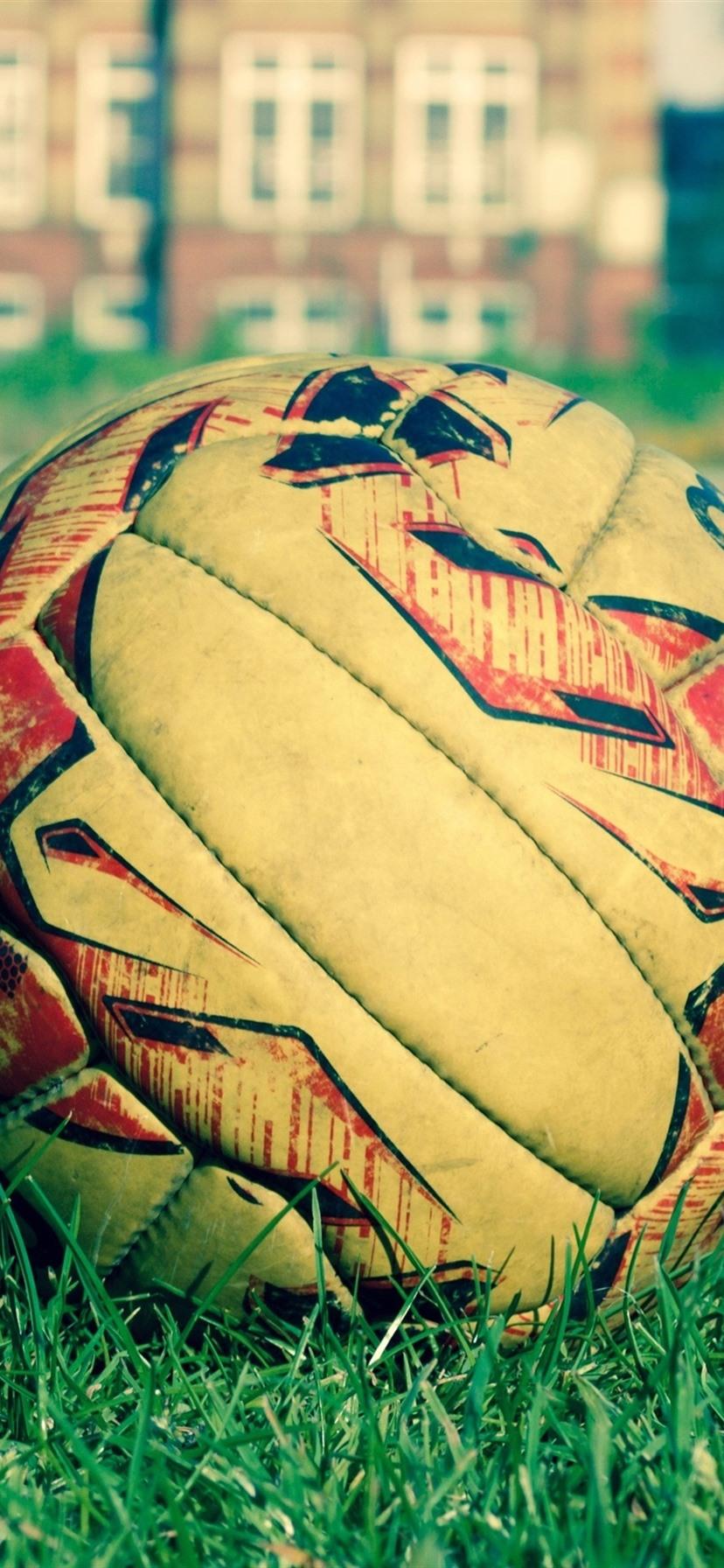 Soccer Ball Grass 1080x1920 Iphone 8 7 6 6s Plus Wallpaper