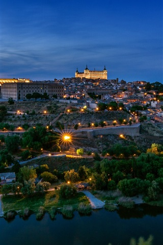 iPhone Wallpaper Spain, Toledo, architecture, city, night, river, trees, lights