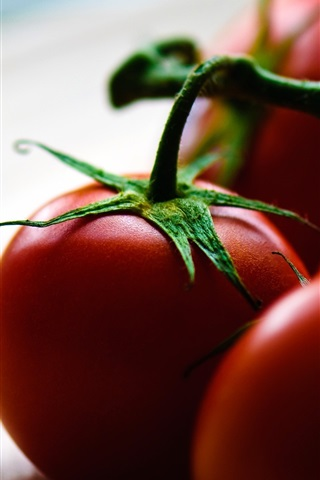 iPhone Wallpaper Tomatoes, plate