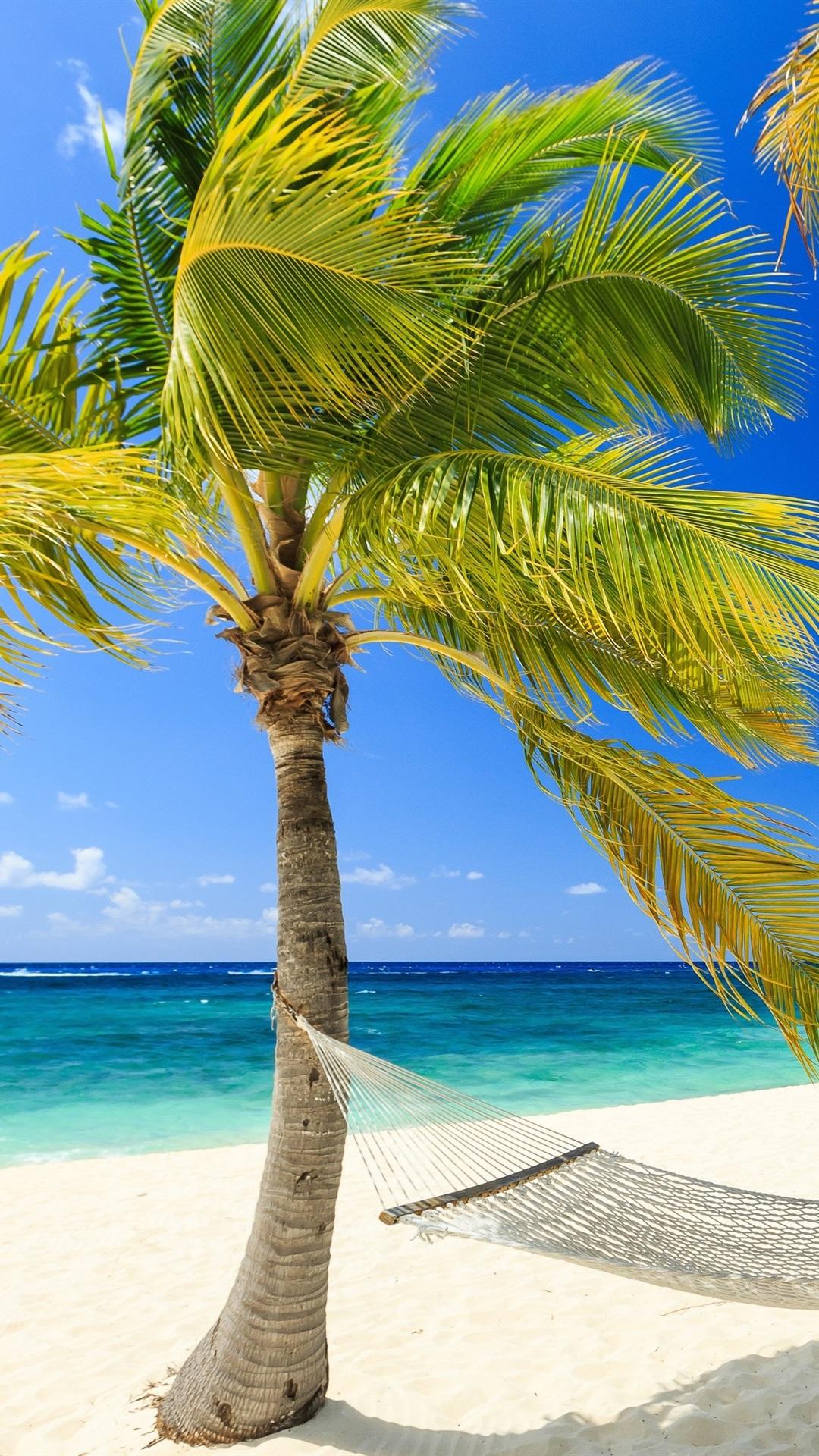 Tropical Paradise Sea Beach Palm Trees Hammock Summer