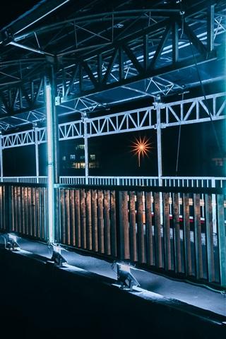 iPhone Wallpaper Vietnam, bridge, illumination, night