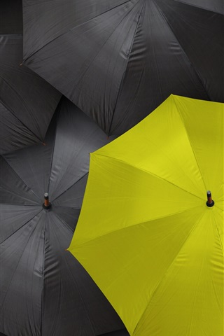 iPhone Wallpaper Black umbrella, one yellow
