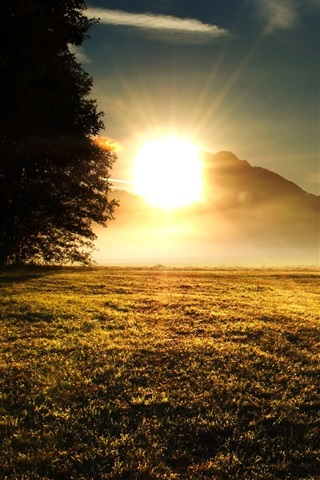 iPhone Wallpaper Grass, trees, mountains, sunrise, sun rays