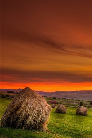 iPhone Wallpaper Hay, field, sunset, red sky