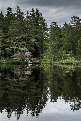 iPhone Wallpaper Trees, lake, huts, water reflection