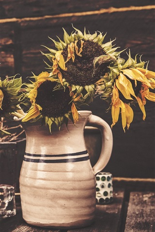 iPhone Wallpaper Withered sunflowers, vase