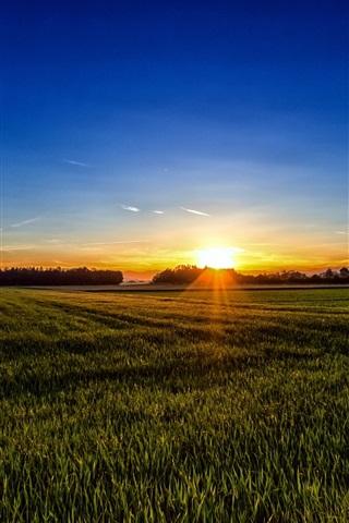iPhone Wallpaper Carinthia, Austria, fields, sunset