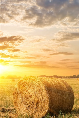 iPhone Wallpaper Fields, hay, clouds, sunset