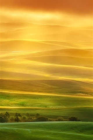 iPhone Papéis de Parede Paisagem bonita, colinas, campos, verde, raios solares, névoa, manhã