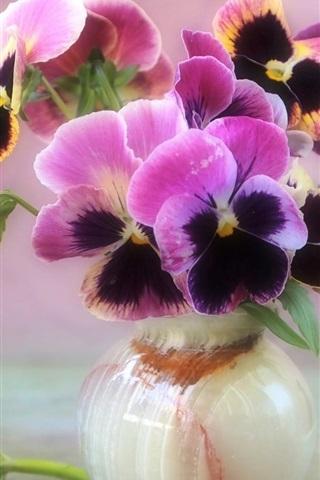 iPhone Wallpaper Beautiful pansies, vase, flowers close-up