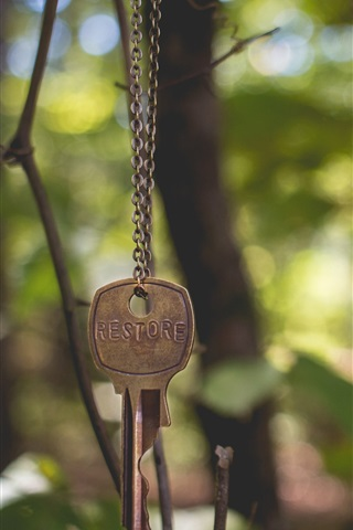 iPhone Wallpaper Key, chain, forest