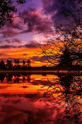 iPhone Wallpaper Lake, clouds, trees, twigs, sunset, red sky