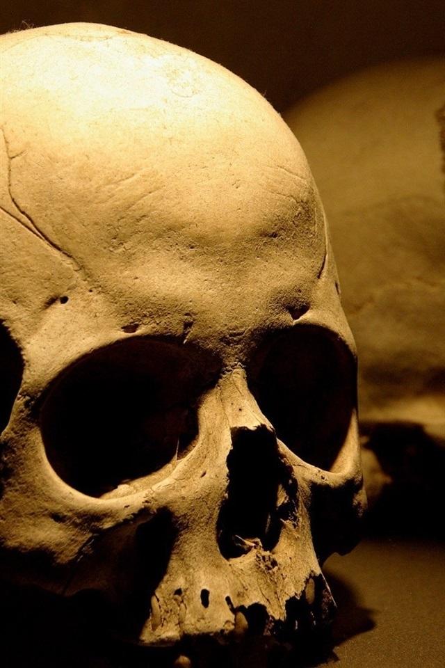 Skull Bones 640x1136 Iphone 5 5s 5c Se Wallpaper Background Picture Image