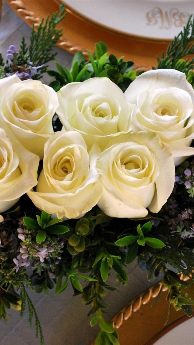 Fondos De Pantalla Rosas Blancas Placa 1920x1200 Hd Imagen