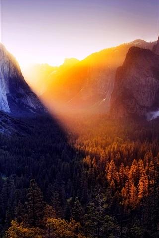 iPhone Wallpaper Yosemite beautiful nature landscape, trees, mountains, sunset, USA