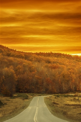 iPhone Wallpaper Autumn, trees, road, red sky, sunset