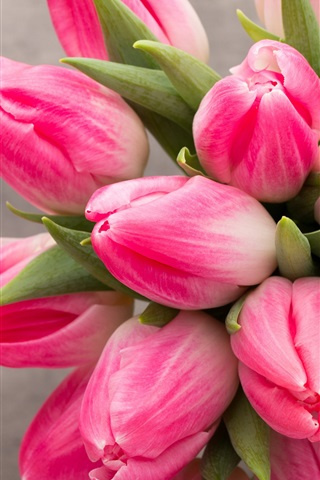 iPhone Wallpaper Beautiful pink tulips flowers, bouquet