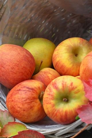 iPhone Wallpaper Harvest, ripe apples, basket, autumn