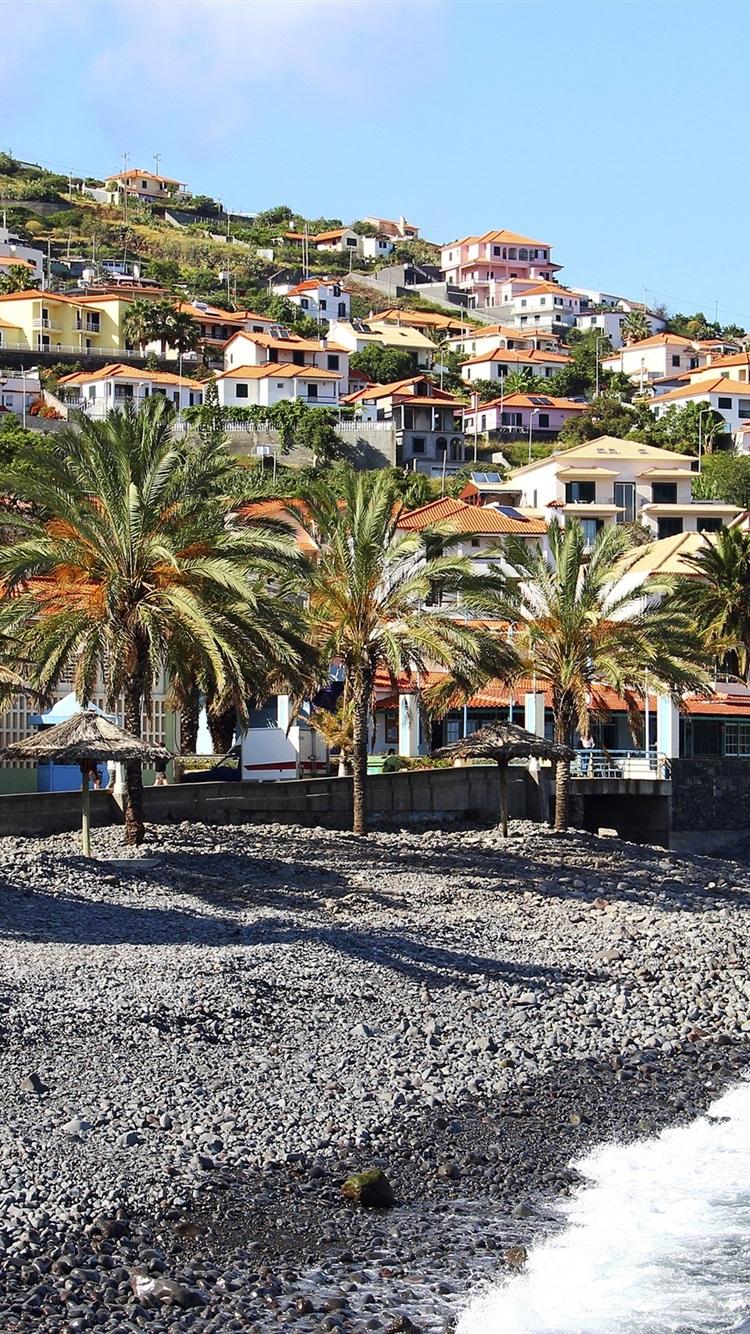壁紙 マデイラ サンタクルス ポルトガル 海 ヤシの木 斜面 家 別荘 x1800 Hd 無料のデスクトップの背景 画像