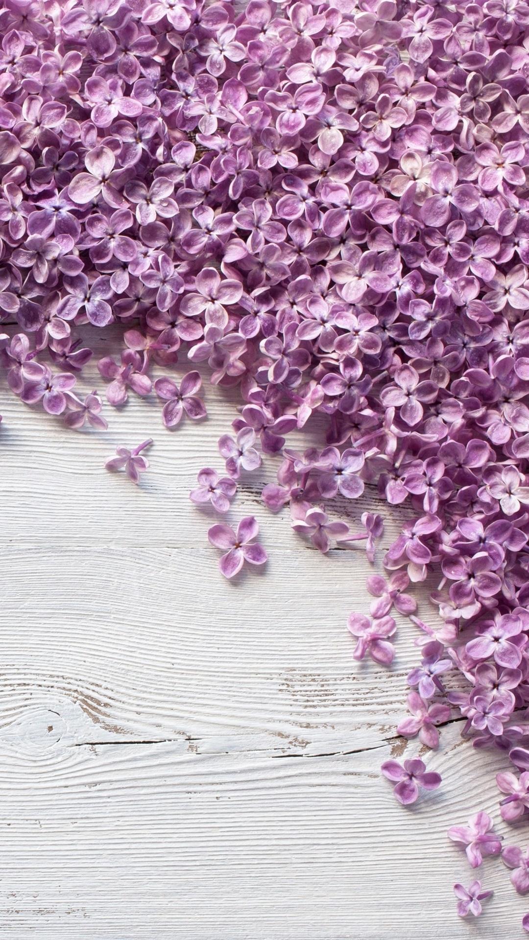Viele Purpurroten Lila Blumen Auf Holzernem Brett 3840x2160 Uhd 4k Hintergrundbilder Hd Bild