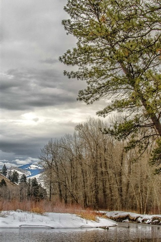 iPhone Wallpaper Montana, Missoula, USA, trees, winter, river, snow, clouds