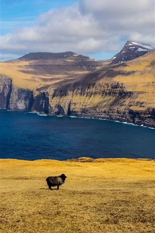 iPhone Wallpaper Mountains, sea, clouds, black sheep, islands