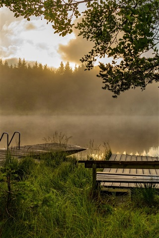iPhone Wallpaper Pier, lake, trees, fog, dawn