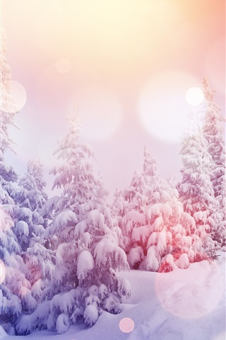 iPhone Wallpaper Pine trees, thick snow, winter, sunshine, glare