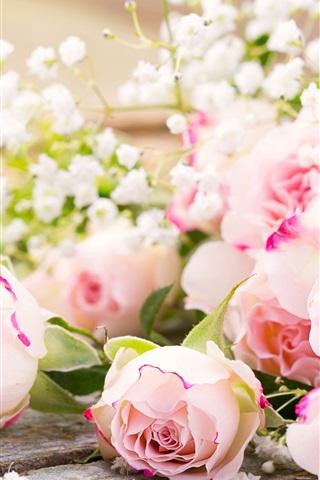 ピンクのバラ 花 1080x1920 Iphone 8 7 6 6s Plus 壁紙 背景 画像
