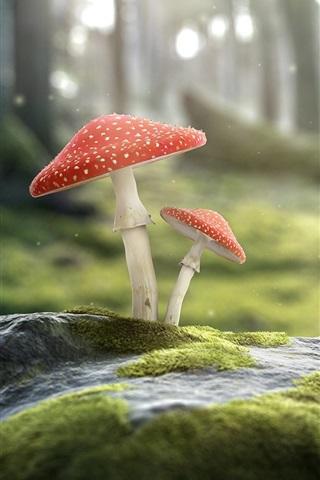 iPhone Papéis de Parede Caracóis e cogumelos, amanita