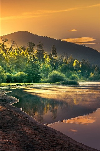 iPhone Wallpaper Beautiful nature landscape, lake, trees, sun rays, dawn