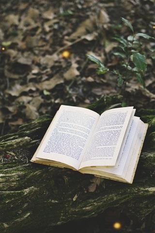 iPhone Wallpaper Book, forest, moss