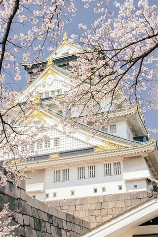 iPhone Wallpaper Japan, Osaka Castle Park, temple, sakura bloom, spring
