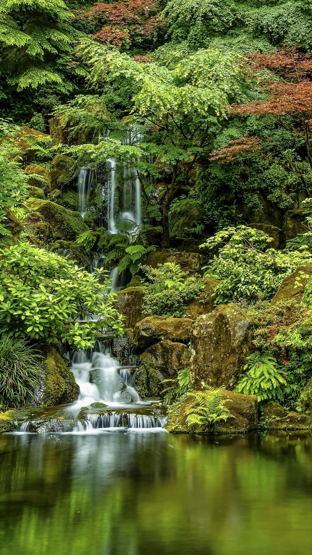 Japanese Gardens, trees, waterfall ...