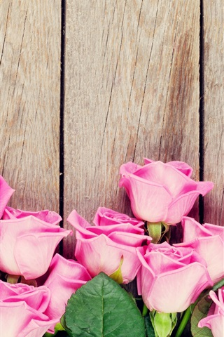 iPhone Wallpaper Pink roses, wood background