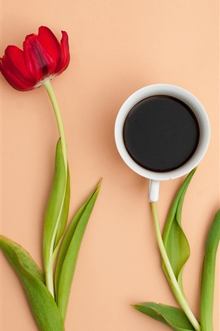 iPhone Wallpaper Red tulip, one cup coffee