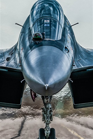iPhone Wallpaper Sukhoi Su-30MKI fighter front view