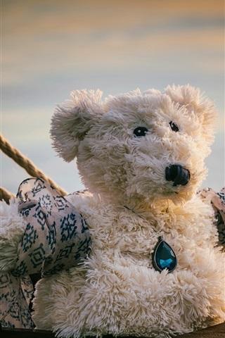iPhone Wallpaper Teddy bear, ropes, Titanic