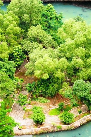 iPhone Wallpaper Vietnam, Ninh Binh, tropical garden, pond, bushes
