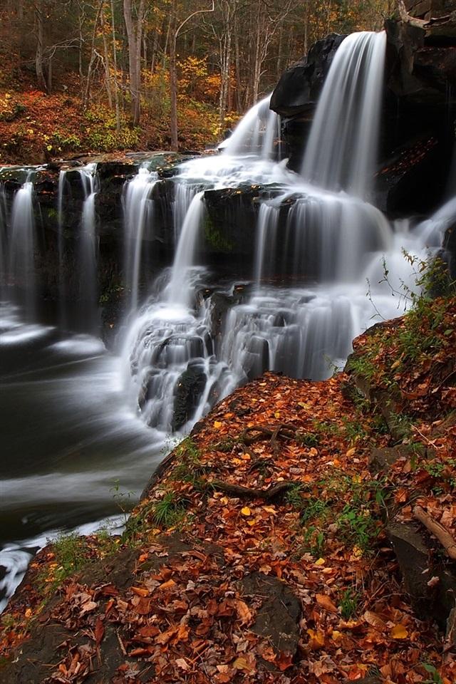 Wallpaper West Virginia Trees Stream Waterfall Autumn