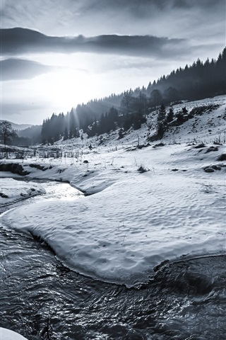 iPhone Wallpaper Winter, snow, river, trees, sun rays, black and white picture