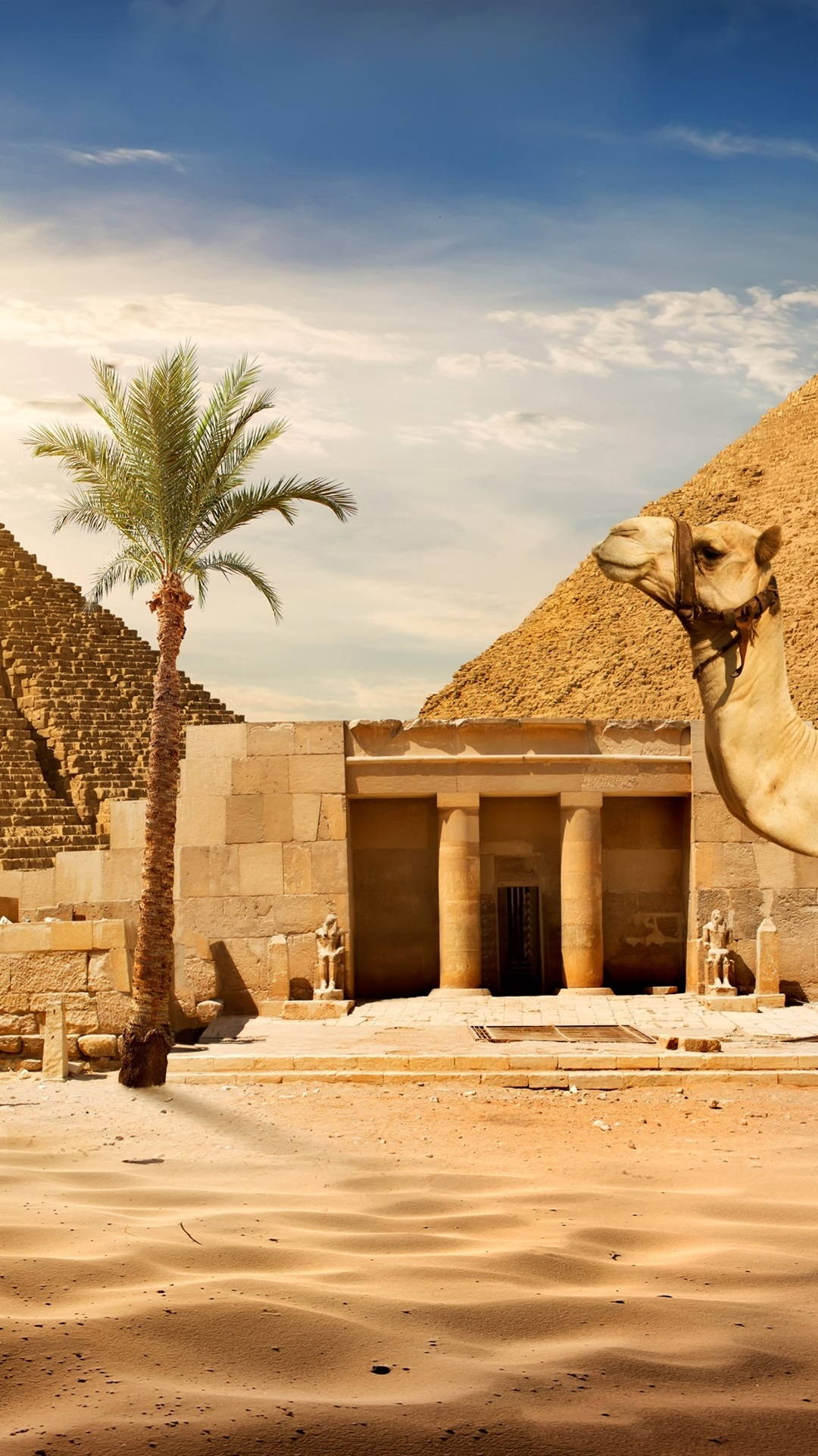 Dating-Standort Kairo