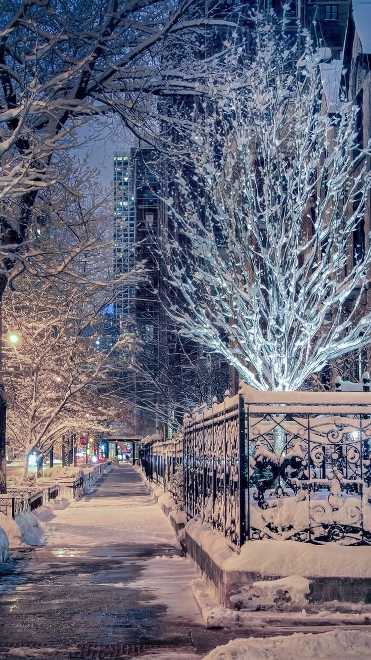 Wallpaper Chicago Illinois Winter Snow Trees Street City