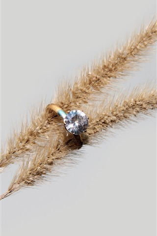 iPhone Wallpaper Diamond ring, spikelets
